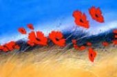 Poppy_Attention_South-west-artist